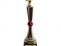 Puchar MMA