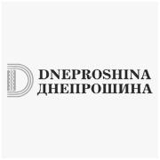 loga-firm-podstrony-dneproshina-001